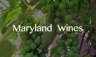 Maryland wines